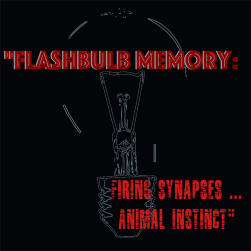 flashbulb memory.png